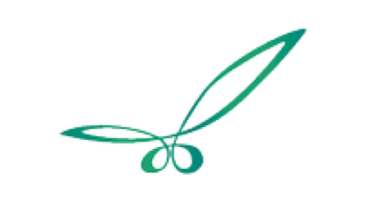 LOGO-LA PALMA-16x9
