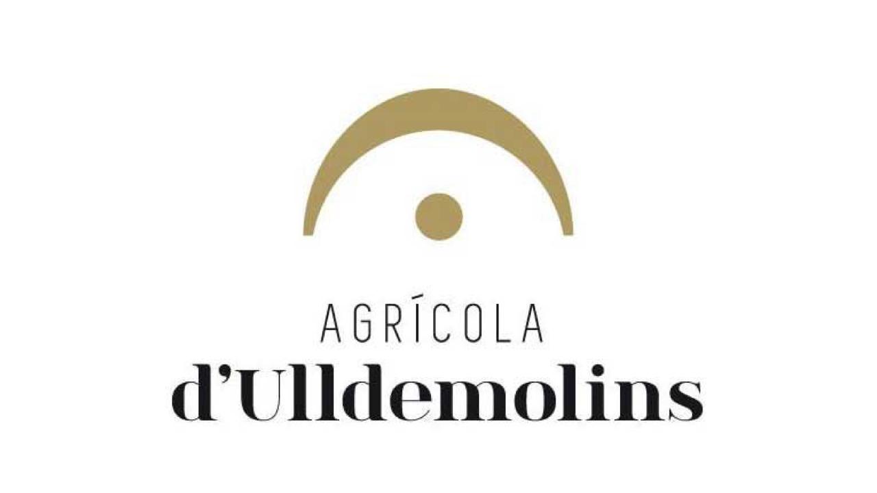 LOGO-ULLDEMOLINS-16x9 (1)