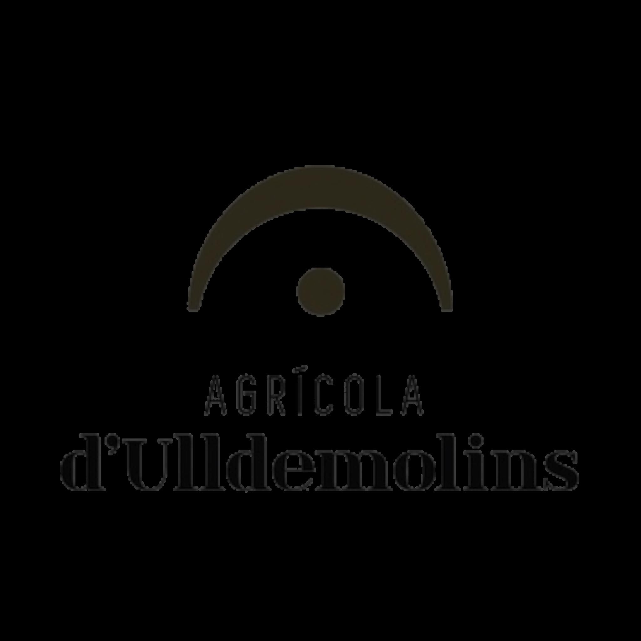 LOGO-ULLDEMOLINS-1x1-transp